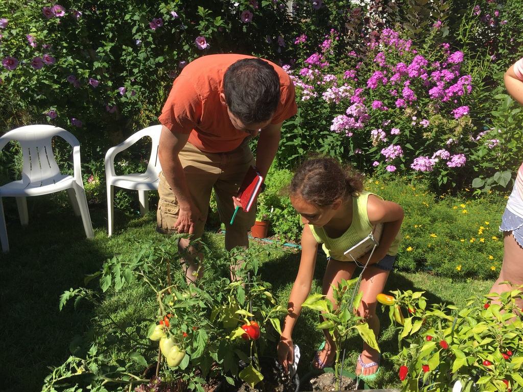Two community members are bending down to inspect pepper and tomato plants in Keeler Gardens. There are a few red tomatoes and peppers visible, and the background is full of lush plants and flowers, along with two white plastic chairs.