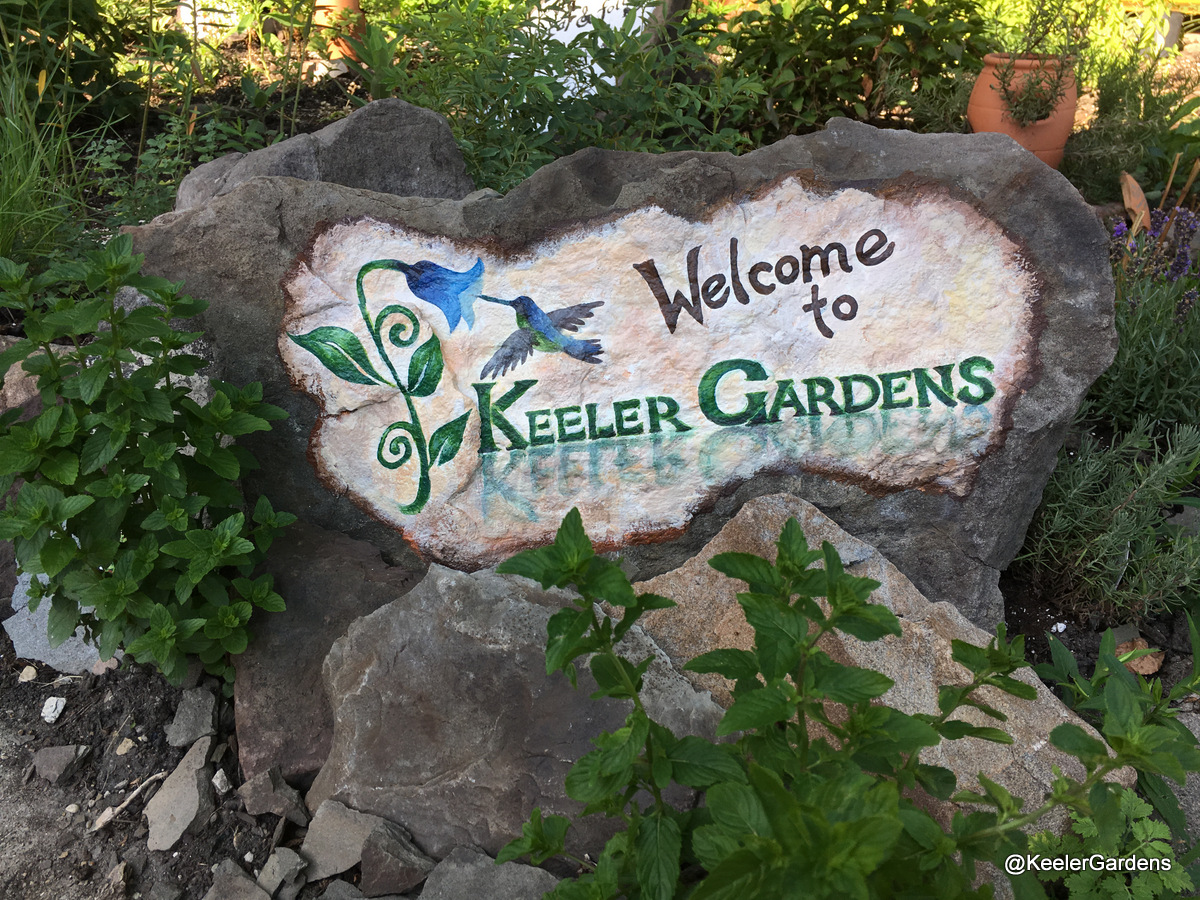 """A rock slab stands upright, braced by other rocks and surrounded by foliage in the Keeler Gardens pollinator habitat. The slab is painted partially white, and text painted on it reads """"Welcome to,"""" in black, and """"Keeler Gardens"""" in green. There is also a painting of a blue and green hummingbird hovering next to a blue flower to the left of the words, which is the Keeler Gardens logo."""