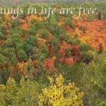 Algonquin Park Fall Colours: The Lookout Trail