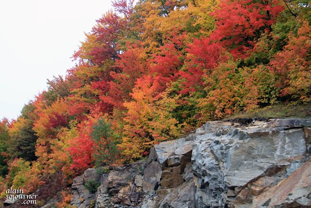 Algonquin Park Foliage is so breathtaking.