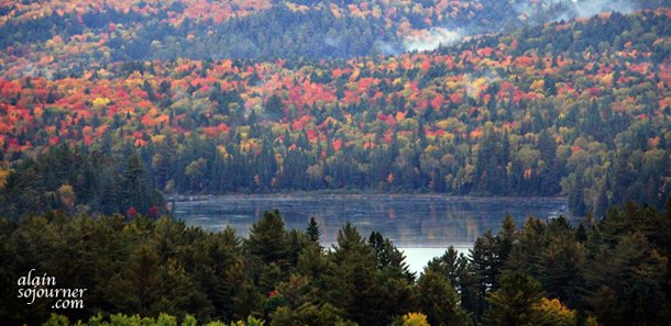 Algonquin Park Foliage is breathtaking.