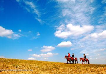Grasslands in Inner Mongolia
