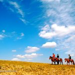 Grasslands in Inner Mongolia