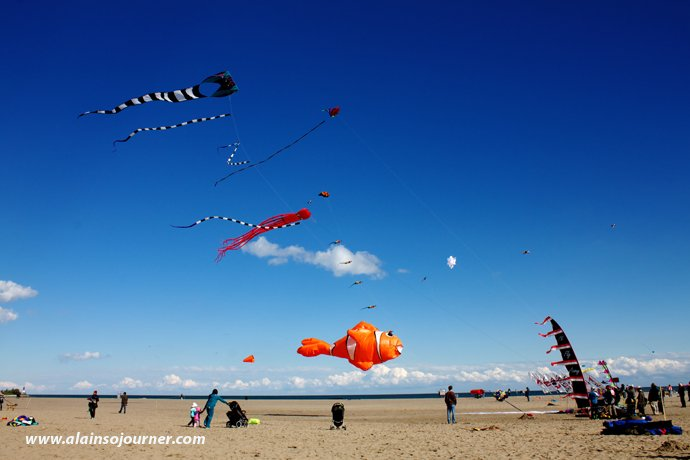 Beaches Toronto Kite Festival Things To Do in Toronto for Budget Travellers