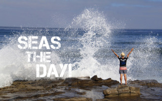 Seas the Day Travel Quote