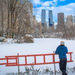 25 Photos of Central Park in Snow