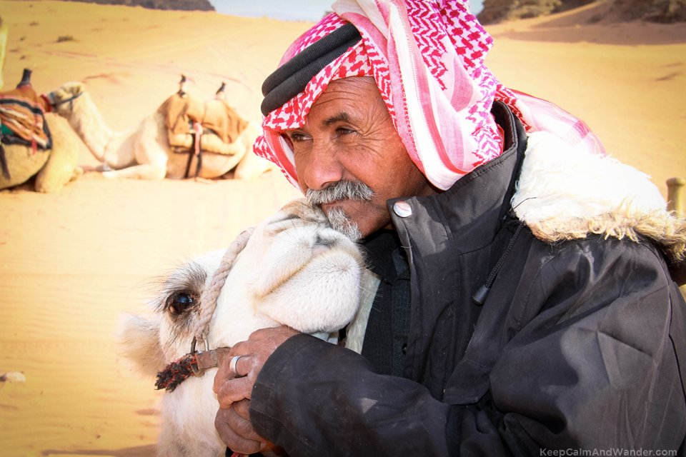 I found love in many places: a Jordanian and his camel.