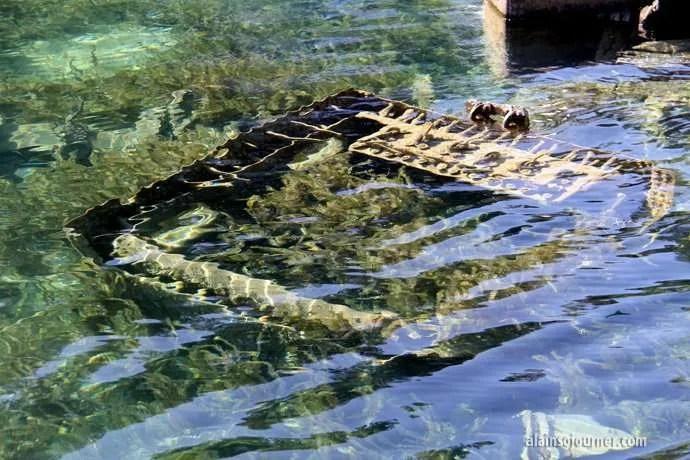city of grand rapids shipwreck