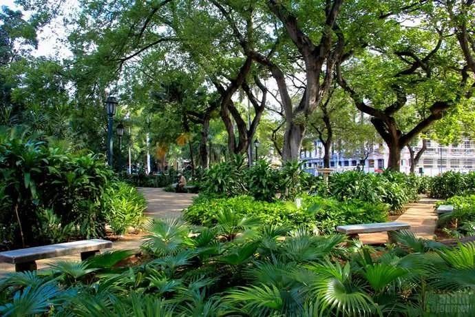 Gays Cuba Place Parque Central