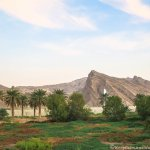 Jabel Hafeet – The Snake Mountain in Al Ain