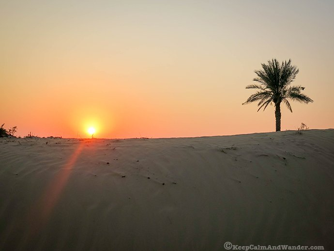 Desert Sunset, Dubai, UAE.