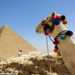 Photos of People Climbing the Great Pyramids of Giza