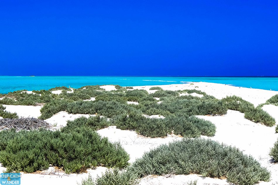 This is a Tiny White Beach Island in Saudi Arabia.