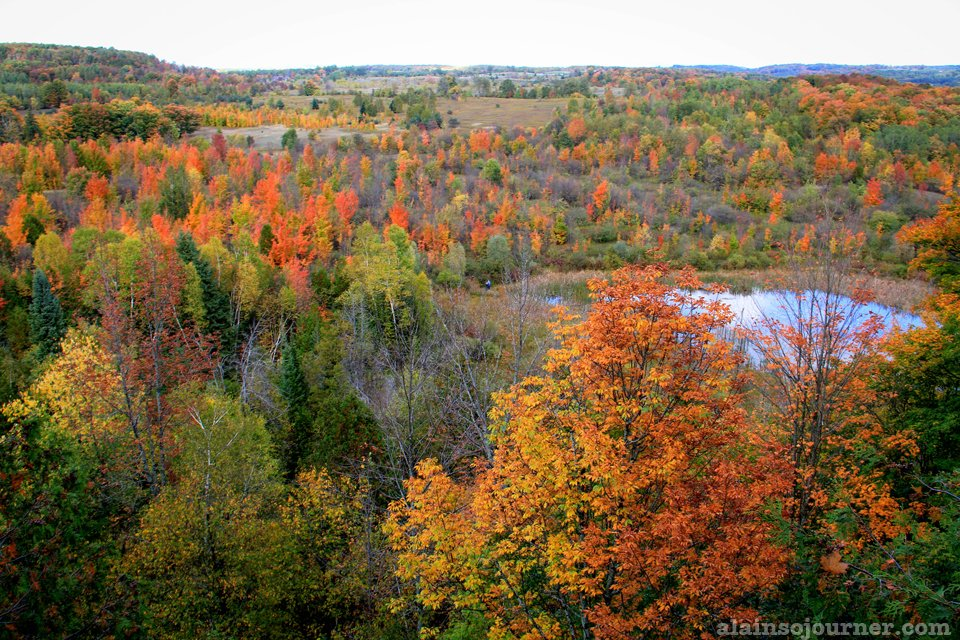 Fall Colors in Mono Cliffs Ontario Canada