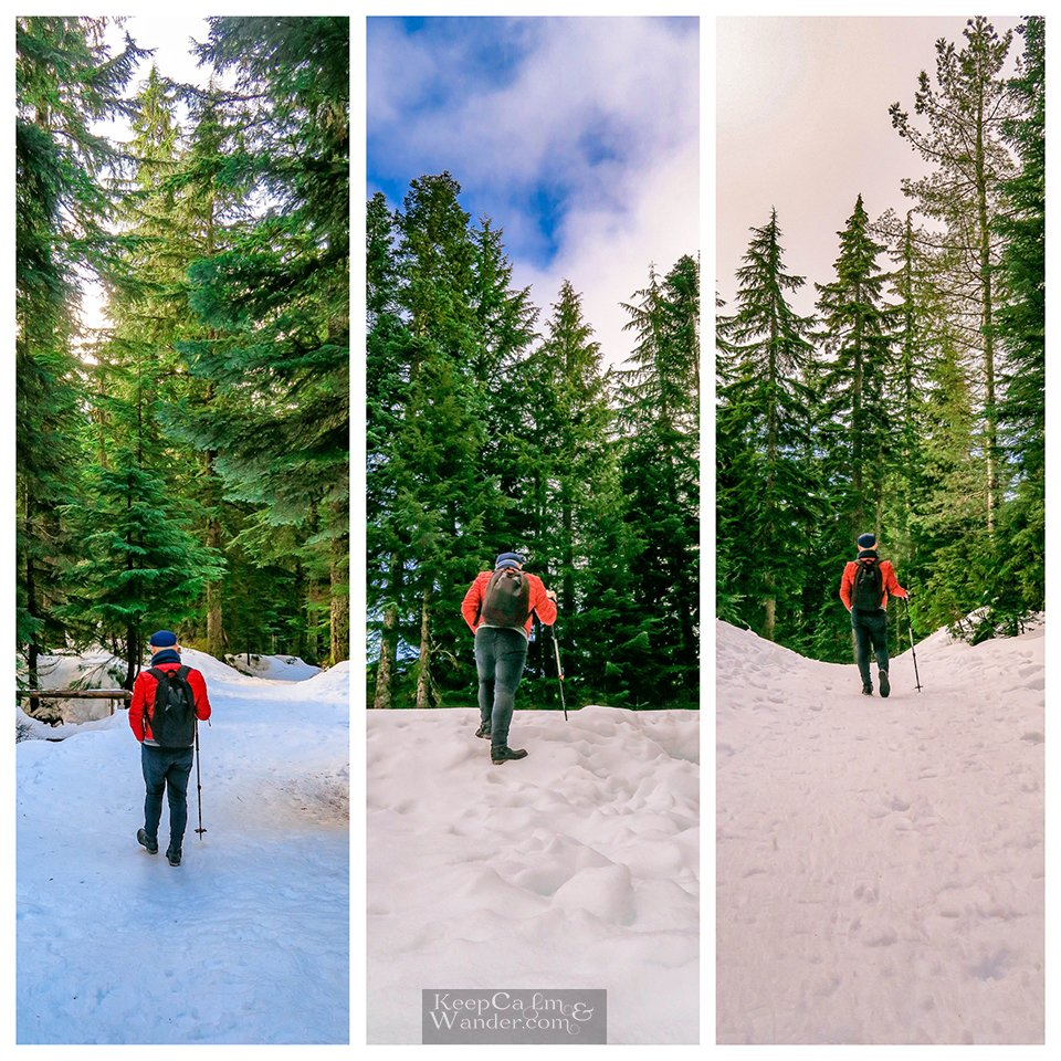 The Hiking Trail to Hollyburn Lodge in Winter (West Vancouver, British Columbia)Canada Parks Travel Blog