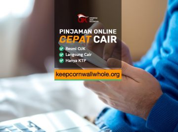 Pinjaman Online Langsung Cair Tanpa Ribet
