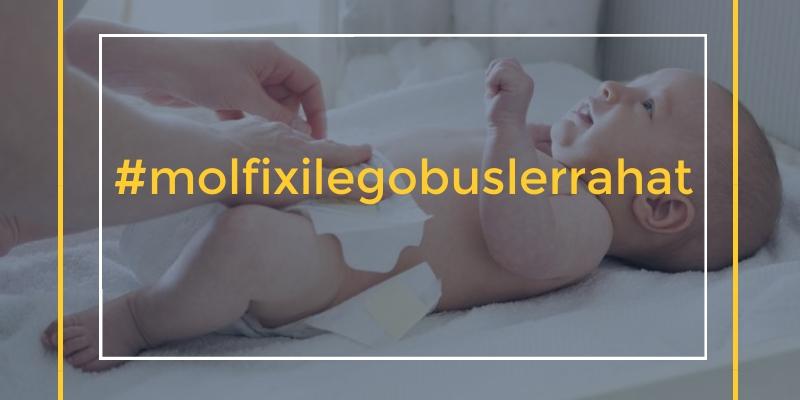 molfixle-gobushler-rahat