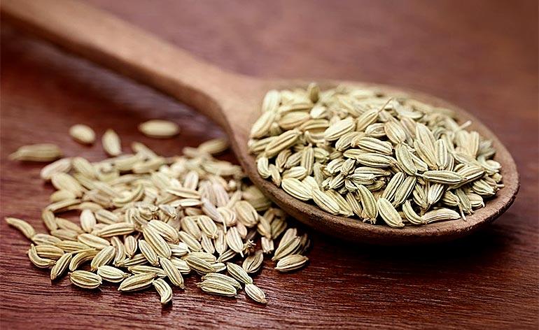 Top 5 Health Benefits of Fennel Seeds! - Keep Fit Kingdom