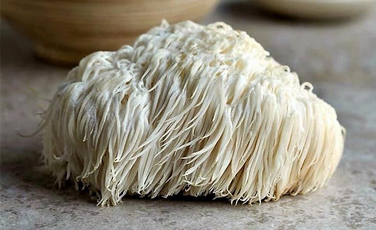 Top 5 Health Benefits of Lion's Mane Mushroom! - Keep Fit Kingdom