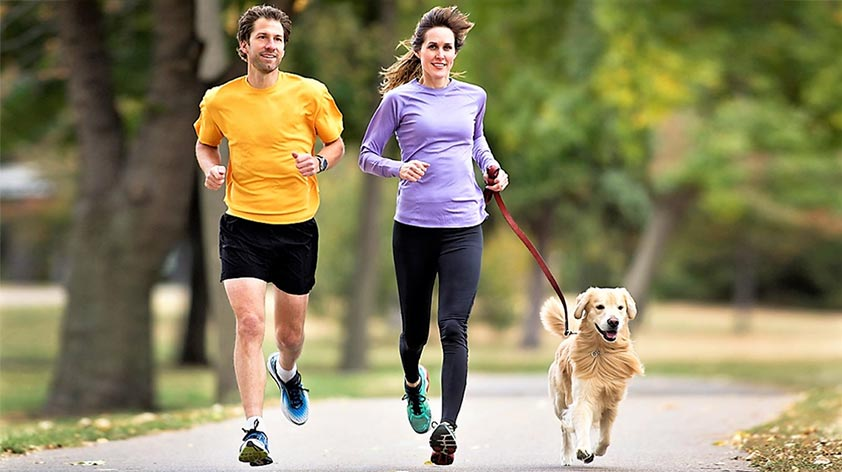 5 Fun Ways to Exercise with Your Dog! - Keep Fit Kingdom