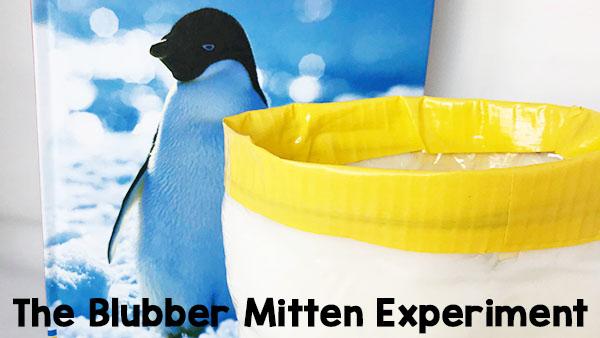 Penguins & The Blubber Mitten Experiment