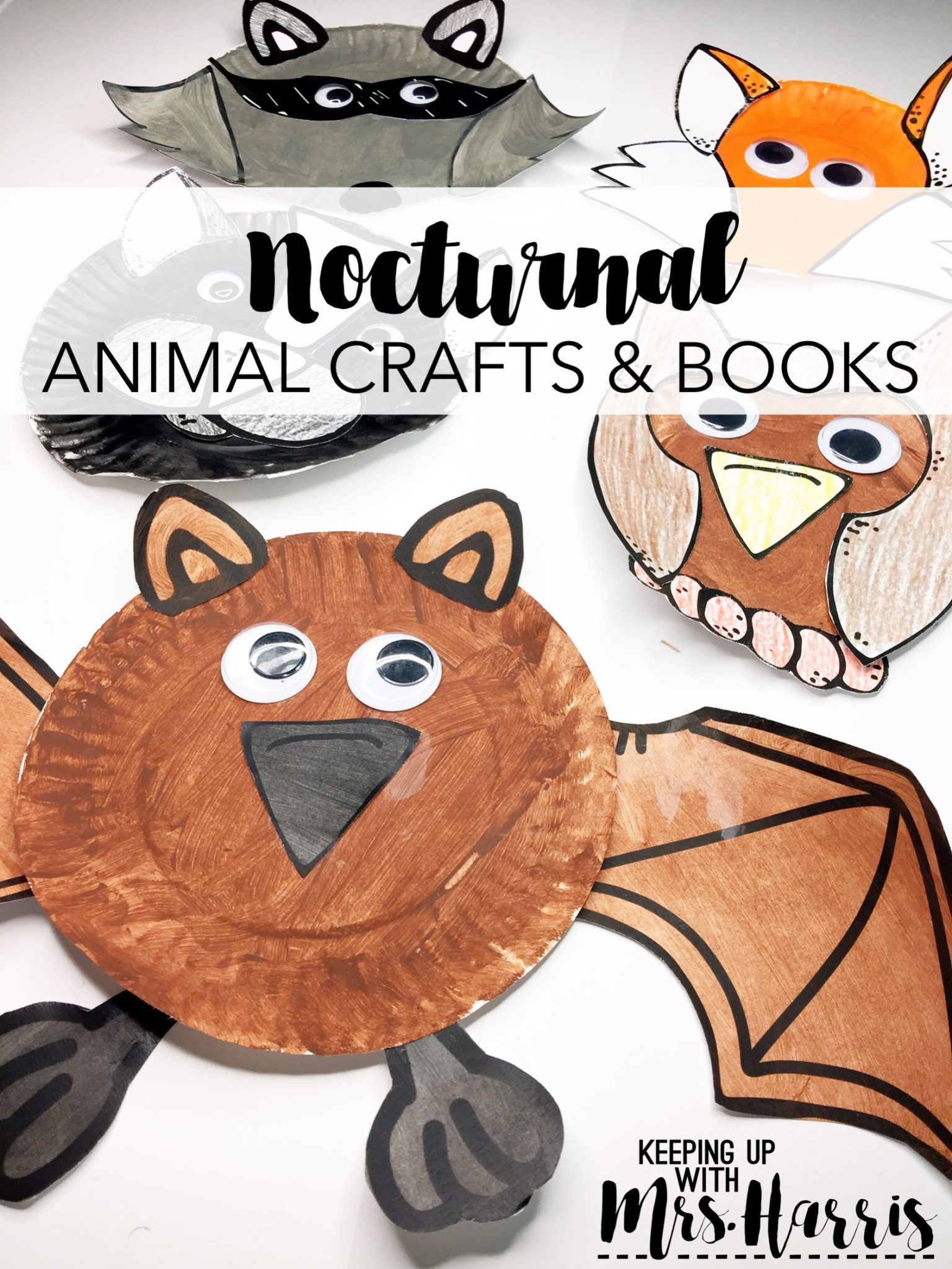 Nocturnal Animal Crafts And Books