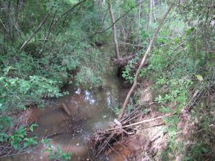 A tributary of Torrence Creek in 2012, before restoration. Torrence flows into McDowell.
