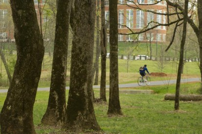 Toby Creek Greenway at UNC Charlotte. Photo: Nancy Pierce