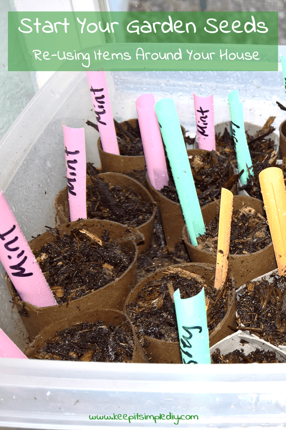 Start your garden seeds re-using items around your house