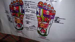 A foot reflexology chart to map sole zones and organs.