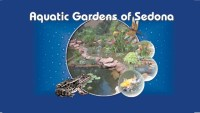 Aquatic Gardens of Sedona