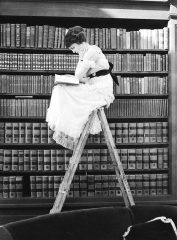 reading_on_a_ladder