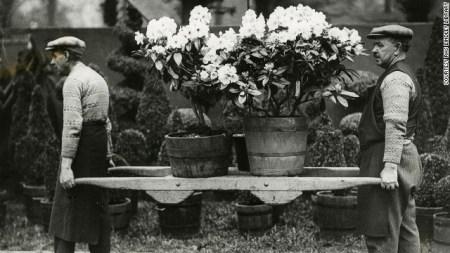 8355f_130514161217-chelsea-1931-gardeners-carry-pots-horizontal-gallery
