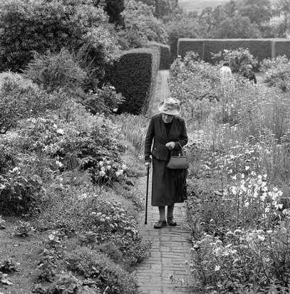 a-brick-path-in-a-flower-garden