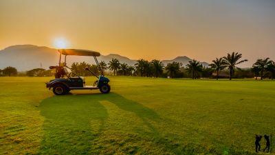 Palm Hills Cart