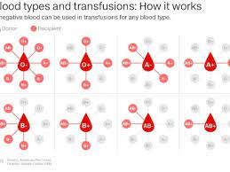 Why do we have different blood types — and do they make us more ...