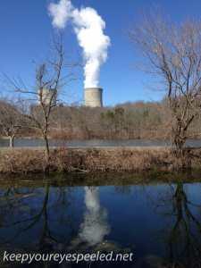 PPL wetlands (1 of 2)