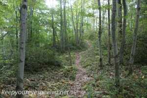 Bear Creek Preserve (2 of 39)