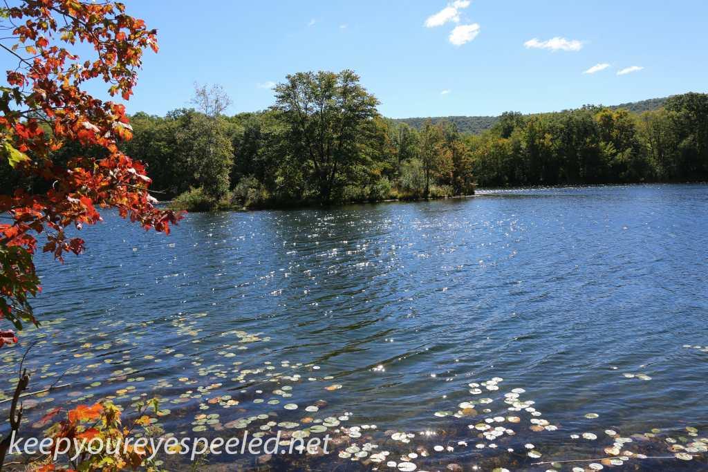 Nescopeck  State park  (29 of 36)