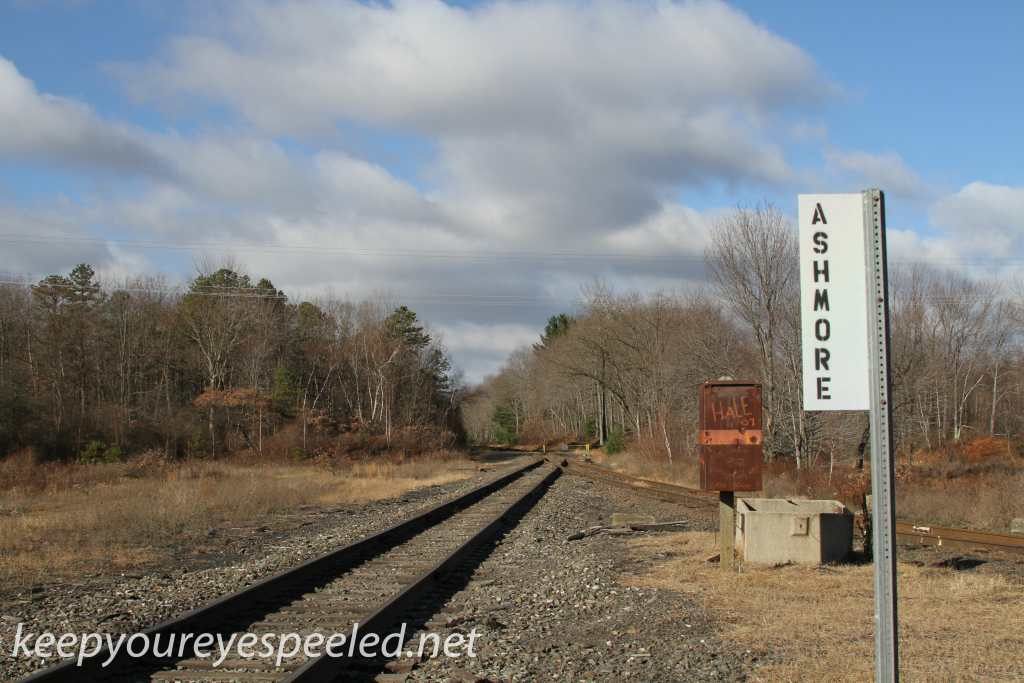 Ashmore yard and rails  (15 of 48)