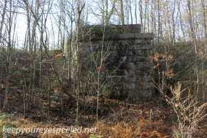 Hazle Brook- Jeddo tunnel hike  (8 of 29)