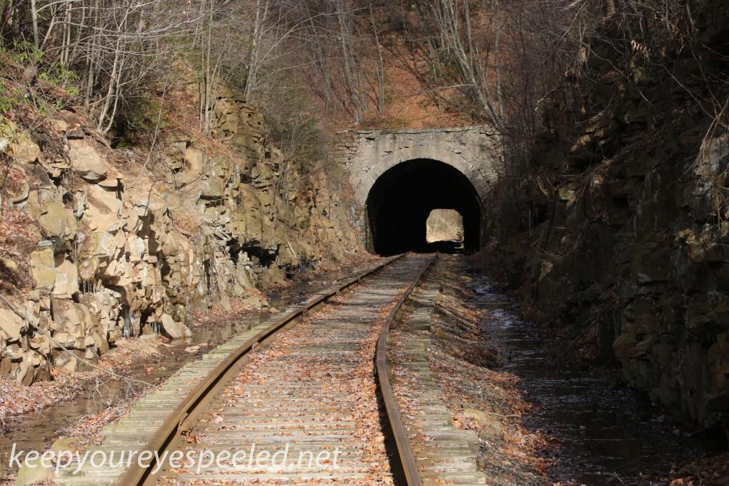 Hazle Brook jeddo Tunnel (2 of 17)