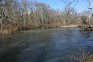 PPL Wetlands -3