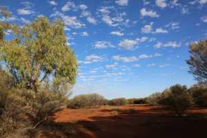 Uluru cultutal center and hike -18