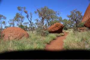 Uluru   hike -24