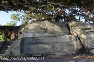 sydney moning walk Botanical Gardens-28