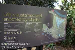 Melbourne Botanical gardens -1