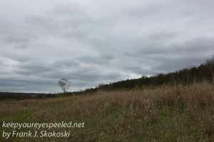 railroad tracks hike -31