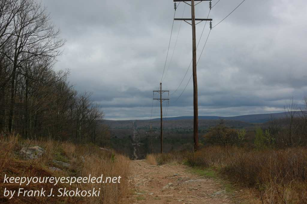 stocton rails to trails -25