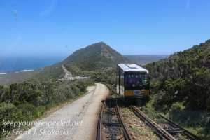 capetown-to-cape-of-good-hope-41